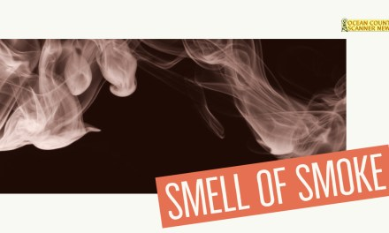 BRICK: Smell Of Smoke In The Area