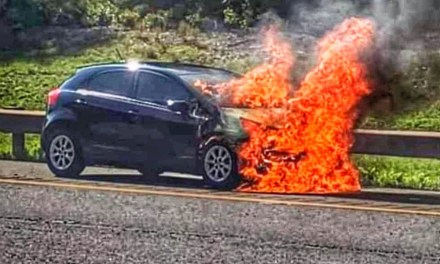 Parkway: Car on fire GSP North