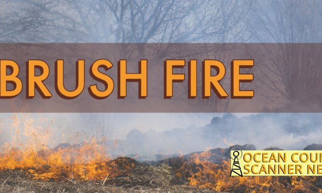BERKELEY: Brush Fire