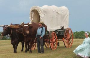 a man and woman in pioneer clothing walk next to yoked oxen and a covered wagon