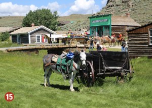 Horse and wagon in old west down
