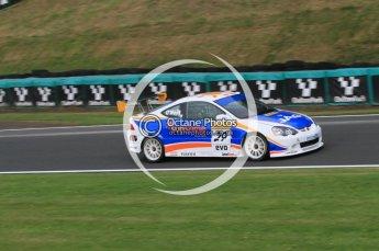 © Octane Photographic Ltd. 2010. British Touring Car Championship – Oulton Park. Saturday 5th June 2010. Digital Ref : 0125CB7D3321