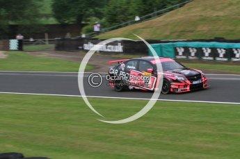 © Octane Photographic Ltd. 2010. British Touring Car Championship – Oulton Park. Saturday 5th June 2010. Digital Ref : 0125CB7D3326
