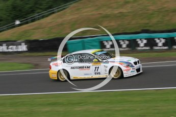 © Octane Photographic Ltd. 2010. British Touring Car Championship – Oulton Park. Saturday 5th June 2010. Digital Ref : 0125CB7D3342