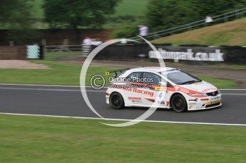 © Octane Photographic Ltd. 2010. British Touring Car Championship – Oulton Park. Saturday 5th June 2010. Digital Ref : 0125CB7D3388