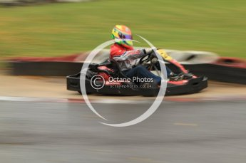 © Octane Photographic Ltd. 2011. Milton Keynes Daytona Karting, Forget-Me-Not Hospice charity racing. Sunday October 30th 2011. Digital Ref : 0194cb7d8691