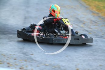 © Octane Photographic Ltd. 2011. Milton Keynes Daytona Karting, Forget-Me-Not Hospice charity racing. Sunday October 30th 2011. Digital Ref : 0194cb7d9826