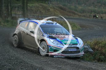 © North One Sport Ltd 2011 / Octane Photographic Ltd 2011. 12th November 2011 Wales Rally GB, WRC SS17 Myherin. Digital Ref : 0198cb1d9361