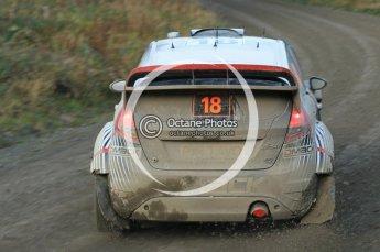 © North One Sport Ltd 2011 / Octane Photographic Ltd 2011. 12th November 2011 Wales Rally GB, WRC SS17 Myherin. Digital Ref : 0198cb1d9501