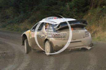 © North One Sport Ltd 2011 / Octane Photographic Ltd 2011. 12th November 2011 Wales Rally GB, WRC SS17 Myherin. Digital Ref : 0198cb1d9561