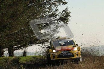 © North One Sport Ltd 2011 / Octane Photographic Ltd 2011. 13th November 2011 Wales Rally GB, WRC SS21 Halfway. Henning Solberg and Ilka Minor in their Ford Fiesta RS WRC, Digital Ref : 0200LW7D8686