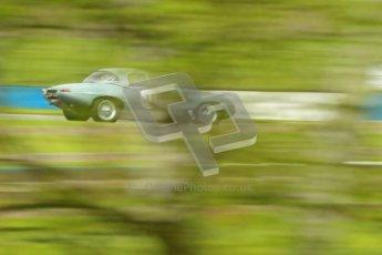 © Octane Photographic Ltd. 2012 Donington Historic Festival. E-type Challenge, qualifying. Jaguar E-type - Per Jonsson. Digital Ref : 0317cb1d8148