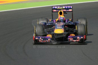 World © Octane Photographic Ltd. F1 Hungarian GP - Hungaroring. Friday 26th July 2013. F1 Practice 2. Infiniti Red Bull Racing RB9 - Mark Webber. Digital Ref : 0760lw1d2023
