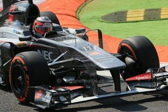World © Octane Photographic Ltd. F1 Italian GP - Monza, Friday 6th September 2013 - Practice 2. Sauber C32 - Nico Hulkenberg. Digital Ref : 0813lw1d2634