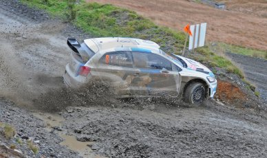World © Octane Photographic Ltd./Louise Tope. WRC GB 15th November 2013. Digital Ref. : 0874ltd31812