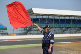 World © Octane Photographic Ltd. Formula 1 - Young Driver Test - Silverstone. Thursday 18th July 2013. Day 2. Red Flag. Digital Ref : 0753lw1d9245