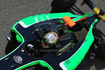 World © Octane Photographic Ltd. Sunday 23rd November 2014. GP3 Race 2 – Abu Dhabi GP - Yas Marina Circuit, United Arab Emirates. Alfonso Cellis Jr - Status Grand Prix. Digital Ref :1169CB1D6619