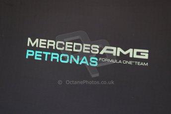 World © Octane Photographic Ltd. Wednesday 26th November 2014. Abu Dhabi Testing - Yas Marina Circuit. Mercedes AMG Petronas F1. Digital Ref: 1175LB1D8755