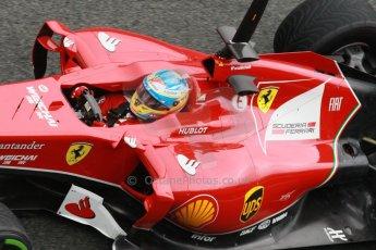 World © Octane Photographic Ltd. 2014 Formula 1 Winter Testing, Circuito de Velocidad, Jerez. Friday 31st January 2014. Day 4. Scuderia Ferrari F14T - Fernando Alonso. Digital Ref: 0888cb1d1510