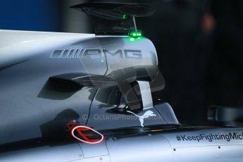 World © Octane Photographic Ltd. 2014 Formula 1 Winter Testing, Circuito de Velocidad, Jerez. Tuesday 27th January 2014. Mercedes AMG Petronas F1 W05 launch. Digital Ref: 0884cb1d9162