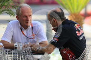 World © Octane Photographic Ltd. Scuderia Toro Rosso - Franz Tost and Red Bull Racing - Helmut Marko. Friday 27th November 2015, F1 Abu Dhabi Grand Prix, Practice 1, Yas Marina. Digital Ref: 1477CB1L4973