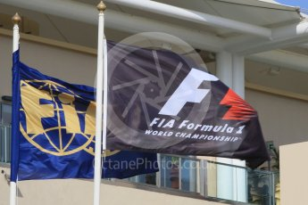 World © Octane Photographic Ltd. Formula 1 flags. Friday 27th November 2015, F1 Abu Dhabi Grand Prix, Practice 1, Yas Marina. Digital Ref: 1477CB1L5332