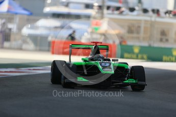 World © Octane Photographic Ltd. Friday 27th November 2015. Status Grand Prix – Sandy Stuvik. GP3 Practice - Yas Marina, Abu Dhabi. Digital Ref. : 1475LB1D5124
