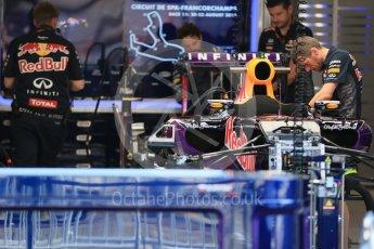 World © Octane Photographic Ltd. Infiniti Red Bull Racing RB11 – Daniil Kvyat. Thursday 20th August 2015, F1 Belgian GP Pitlane, Spa-Francorchamps, Belgium. Digital Ref: 1370LB1D6729