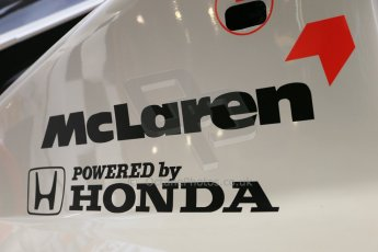 World © Octane Photographic Ltd. Donington Grand Prix Collection 25th January 2015. McLaren Honda. Digital Ref:  1179CB1D0888