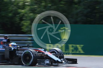 World © Octane Photographic Ltd. McLaren Honda MP4/30 – Fernando Alonso. Friday 24th July 2015, F1 Hungarian GP Practice 2, Hungaroring, Hungary. Digital Ref: 1348LB1D8573