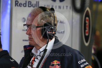 World © Octane Photographic Ltd. Infiniti Red Bull Racing - Dr.Helmut Marko. Saturday 5th September 2015, F1 Italian GP Practice 3, Monza, Italy. Digital Ref: 1411LB1D0892