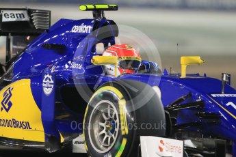 World © Octane Photographic Ltd. Sauber F1 Team C34-Ferrari – Felipe Nasr. Friday 18th September 2015, F1 Singapore Grand Prix Practice 2, Marina Bay. Digital Ref: 1429CB7D0338