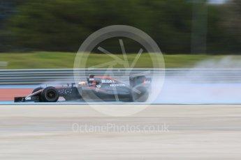 World © Octane Photographic Ltd. Pirelli wet tyre test, Paul Ricard, France. Monday 25th January 2016. McLaren Honda MP4/30 – Stoffel Vandoorne. Digital Ref: 1498CB7D5185