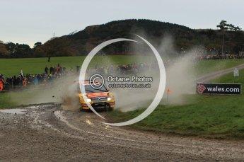 © North One Sport Limited 2010/ Octane Photographic Ltd. 2010 WRC Great Britain, Sunday 14th November 2010. Digital ref : 0120lw1d0048