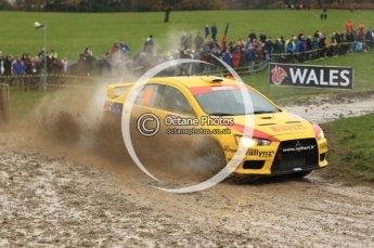 © North One Sport Limited 2010/ Octane Photographic Ltd. 2010 WRC Great Britain, Sunday 14th November 2010. Digital ref : 0120lw1d0310