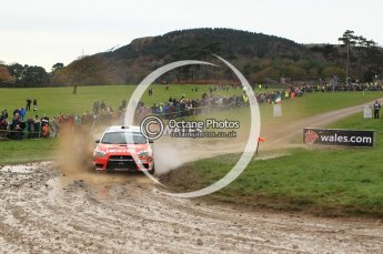 © North One Sport Limited 2010/ Octane Photographic Ltd. 2010 WRC Great Britain, Sunday 14th November 2010. Digital ref : 0120lw1d0410