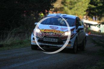 © North One Sport Limited 2010/ Octane Photographic Ltd. 2010 WRC Great Britain, Saturday 13th November 2010. Digital ref : 0119cb1d1780