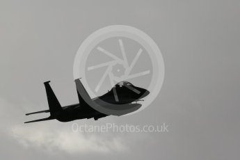 """World © Octane Photographic Ltd. RAF Lakenheath operations 16th November 2015, USAF (United States Air Force) 48th Fighter Wing """"Statue of Liberty Wing"""" 492 Fighter Squadron """"Madhatters"""", McDonnell Douglas F-15E Strike Eagle. Digital Ref : 1469CB1D3816"""