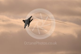 """World © Octane Photographic Ltd. RAF Lakenheath operations 16th November 2015, USAF (United States Air Force) 48th Fighter Wing """"Statue of Liberty Wing"""" 493 Fighter Squadron """"The Grim Reapers"""", McDonnell Douglas F-15C Eagle. Digital Ref : 1469CB1D3846"""