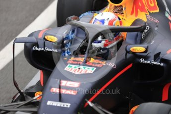 World © Octane Photographic Ltd. Red Bull Racing RB12 with halo cockpit protection device – Pierre Gasly. Tuesday 12th July 2016, F1 In-season testing, Silverstone UK. Digital Ref :1618LB1D7251