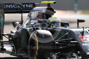 World © Octane Photographic Ltd. McLaren Honda MP4-31 – Jenson Button. Friday 25th November 2016, F1 Abu Dhabi GP - Practice 1, Yas Marina circuit, Abu Dhabi. Digital Ref : 1756LB1D8370