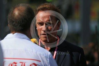 World © Octane Photographic Ltd. Arnold Schwarzenegger. Sunday 20th March 2016, F1 Australian GP - Grid, Melbourne, Albert Park, Australia. Digital Ref : 1523LB1D6796