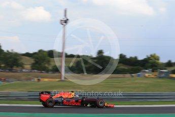 World © Octane Photographic Ltd. Red Bull Racing RB12 – Daniel Ricciardo. Friday 22nd July 2016, F1 Hungarian GP Practice 2, Hungaroring, Hungary. Digital Ref : 1641LB2D1253