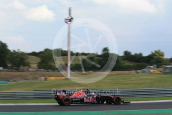 World © Octane Photographic Ltd. Scuderia Toro Rosso STR11 – Carlos Sainz. Friday 22nd July 2016, F1 Hungarian GP Practice 2, Hungaroring, Hungary. Digital Ref : 1641LB2D1290