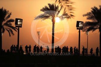 World © Octane Photographic Ltd. Formula 1 - Abu Dhabi Grand Prix - Friday - Practice 2. Fans with the setting sun behind them. Yas Marina Circuit, Abu Dhabi. Friday 24th November 2017. Digital Ref: 2003LB2D8480