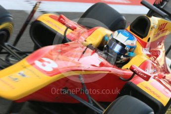 World © Octane Photographic Ltd. FIA Formula 2 (F2) - Practice. Nyck de Vries – Racing Engineering. Abu Dhabi Grand Prix, Yas Marina Circuit. 24th November 2017. Digital Ref:2000CB5D9715