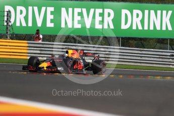 World © Octane Photographic Ltd. Formula 1 - Belgian Grand Prix - Friday - Practice 1. Daniel Ricciardo - Red Bull Racing RB13. Circuit de Spa Francorchamps, Belgium. Friday 25th August 2017. Digital Ref:1922LB1D5198