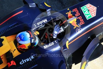 World © Octane Photographic Ltd. Formula 1 - Winter Test 1. Daniel Ricciardo - Red Bull Racing RB13. Circuit de Barcelona-Catalunya. Wednesday 1st March 2017. Digital Ref : 1782CB1D8578