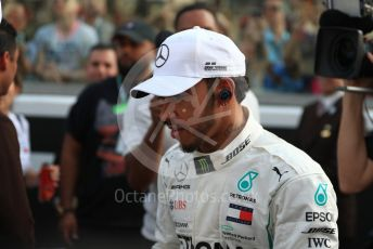 World © Octane Photographic Ltd. Formula 1 –  Abu Dhabi GP - Drivers Parade. Mercedes AMG Petronas Motorsport AMG F1 W09 EQ Power+ - Lewis Hamilton. Yas Marina Circuit, Abu Dhabi. Sunday 25th November 2018.