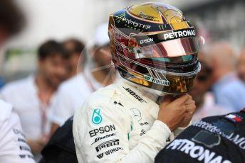 World © Octane Photographic Ltd. Formula 1 – Abu Dhabi GP - Grid. Mercedes AMG Petronas Motorsport AMG F1 W09 EQ Power+ - Lewis Hamilton. Yas Marina Circuit, Abu Dhabi. Sunday 25th November 2018.